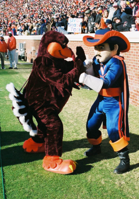 cavalier-and-hokie